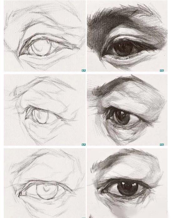 眉弓,眼球,颧骨的穿插结构清晰明确,暗部色调较重.